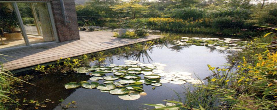 Garten & Wasser-Architektur Leistungen und Produkte